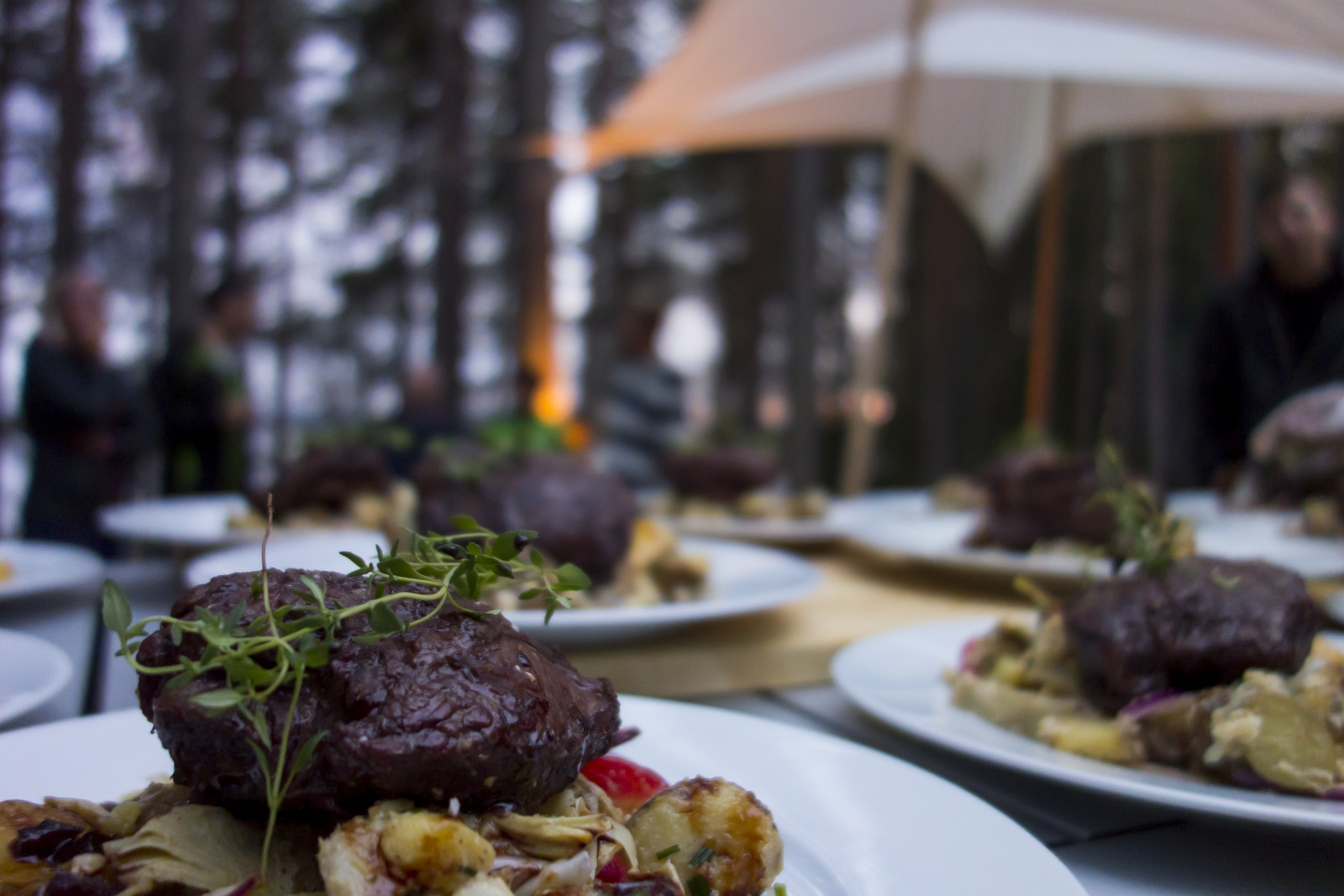 Moose Burgers in Swedish Lapland - Summer Holidays in Sweden