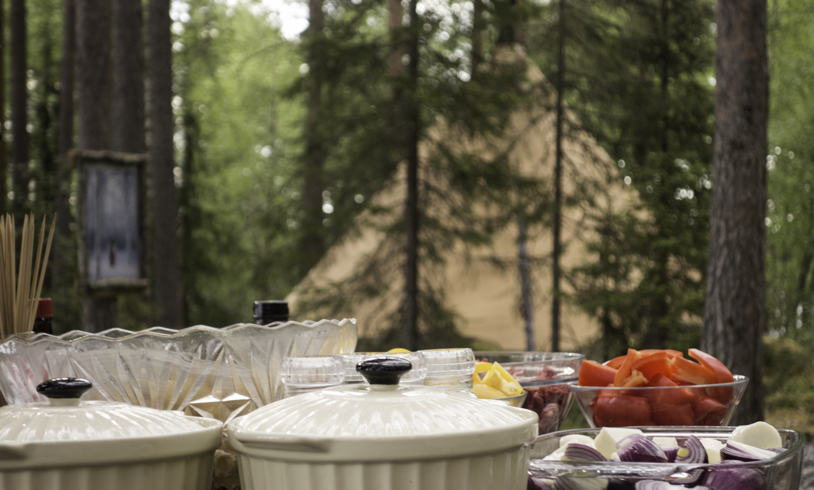Swedish Lapland Summer Camp - Camping in Sweden in the Summer