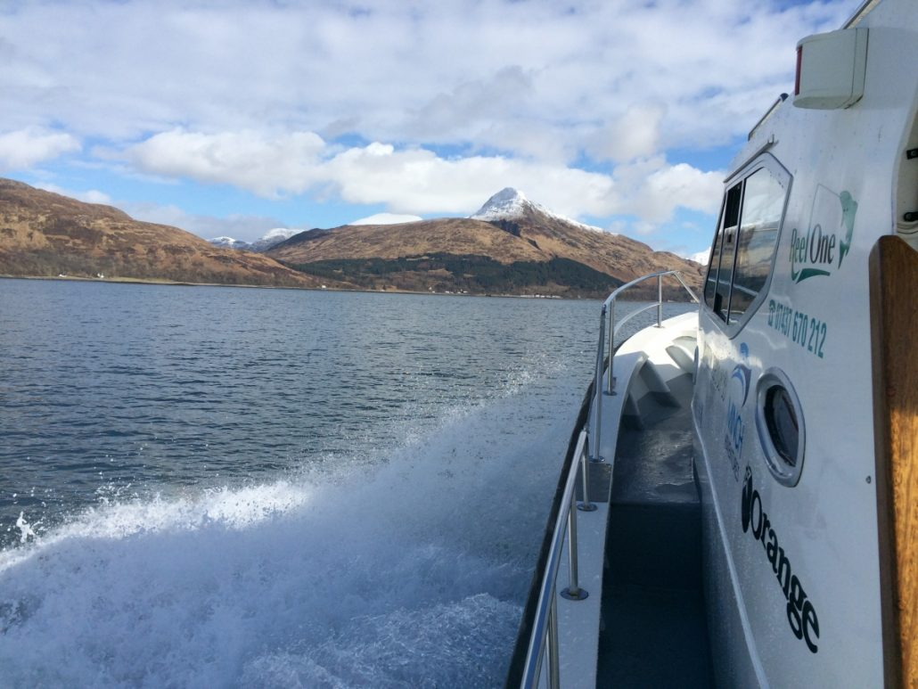 West Coast Boat Trips - Marine Safaris in Scotland with local expert