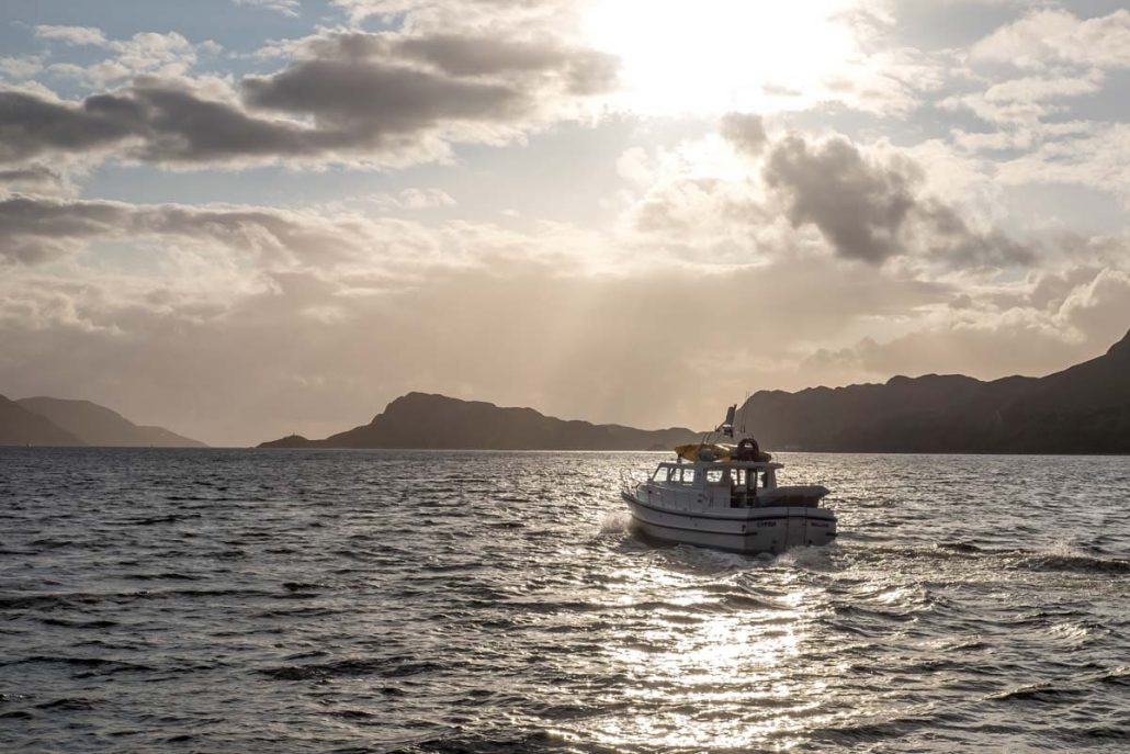 Marine Safaris in Scotland with Luxury Scotland Holiday provider Sandgrouse Travel