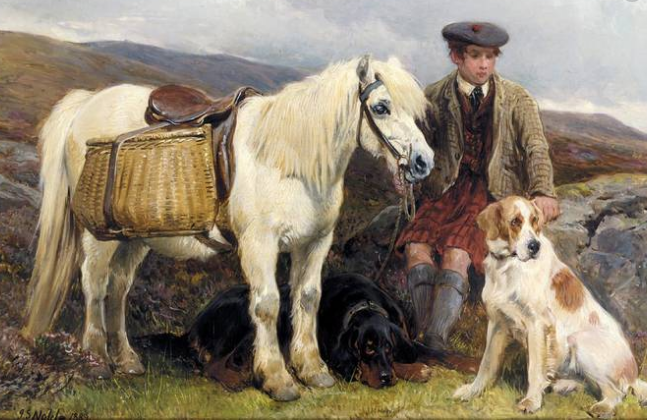 Highland Pony or Garron with traditional panniers. Luxury Scotland Travel Experiences