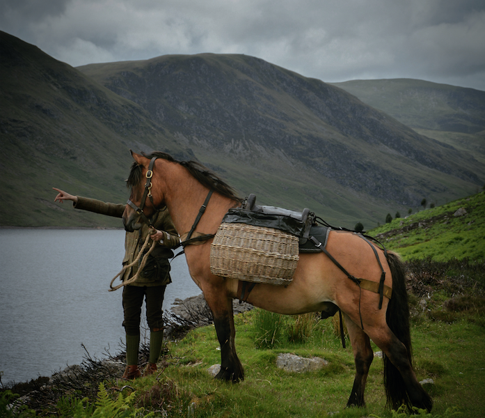 Luxury Highland Pony Picnics - Wild Experiences. Garron Pony - Working Hill Pony.